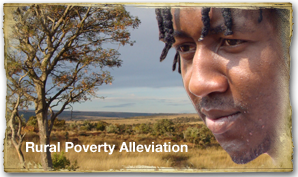 Rural Poverty Illeviation